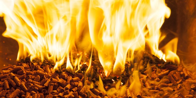 20151106_biomassza_brikett